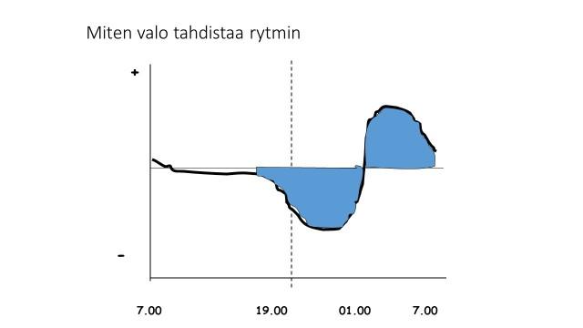 Kuva 5. Kuva esittää miten kirkkaalle valolle altistumisen ajankohta vaikuttaa vuorokausirytmin siirtymiseen. Siirryttäessä pystyakselilla ylös (+) rytmi aikaistuu ja alas (-) rytmi myöhästyy. Vaaka-akselilla oleva kellonaika kertoo milloin valolle on altistuttu. Kustakin kellonaikakohdasta voi vetämällä pystyviivan ylös katsoa, missä kohtaa se leikkaa faasikäyrän ja näin nähdä kuinka paljon ja mihin suuntaan rytmi siirtyy. Esimerkiksi katkoviivan kohdalla annettu valo myöhentää rytmiä noin puoli tuntia.